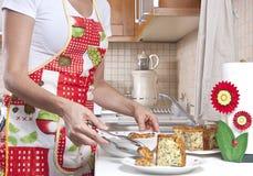 Serviço do alimento Fotografia de Stock