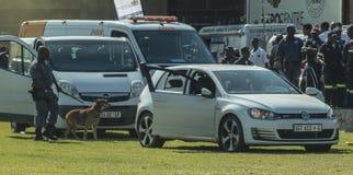 - Serviço policial africano - unidade K9 sul na cena Imagem de Stock Royalty Free
