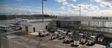 Serviços de assistência do aeroporto internacional Imagens de Stock Royalty Free