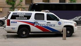 Serviços do cão de polícia de Toronto Imagem de Stock Royalty Free