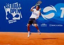 Servië opent 2009 - ATP 250 Royalty-vrije Stock Afbeeldingen