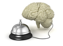 Service bell and human brain Stock Photos