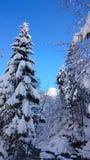 service informatique d'amour de jour de beautiluf d'Alpes de rivière Photos libres de droits