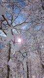 service informatique d'amour de jour de beautiluf d'Alpes de rivière Images stock