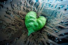 service informatique vert Images libres de droits