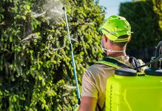 Service professionnel d'insecticide photographie stock