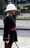 Service royal de bande de marines Image stock