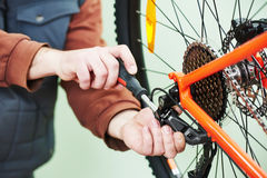 Serviceman installing assembling or adjusting bicycle gear on wh Stock Images