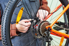 Serviceman installing assembling or adjusting bicycle gear on wh Royalty Free Stock Images