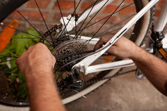 Serviceman repairing a bicycle tire with tools Royalty Free Stock Photography