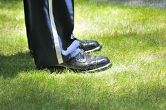 Serviceman's shoes. A military serviceman's shoes on green grass Stock Illustration