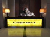 Servicio de atención al cliente divertido del puesto de informaciones Imagen de archivo
