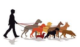 Servicio que camina del perro libre illustration