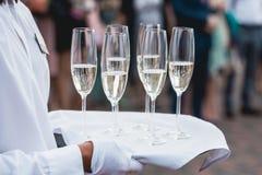 Servicios del abastecimiento celebración vidrios con alcohol en una bandeja Imágenes de archivo libres de regalías
