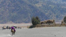 Servicios del montar a caballo de los turistas en el soporte Bromo almacen de metraje de vídeo