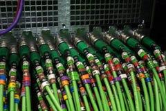 Servidor audio acústico do cabo Cabo audio verde Muitos cabos acústicos Cabo oaxial do ¡ de Ð para o servidor da transmissão de d Fotos de Stock Royalty Free