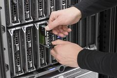 Servidor da lâmina de Replace Hard Drive do consultante da TI Imagens de Stock