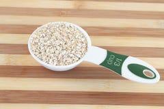 Serving av oatmealen royaltyfria bilder