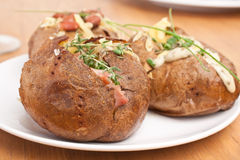 Serving of Baked Jacket Potatoes. Three Crispy Baked Jacket Potatoes with beans, melted cheese and herbs Royalty Free Stock Photo