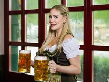 Serving beer during Oktoberfest. Photo of a beautiful female waitress wearing traditional dirndl and holding huge beers in a pub Stock Photos