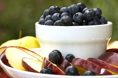 Serving Blueberries Stock Images