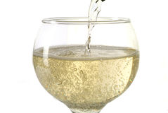 Serving Champagne. Sparkling wine of Champagne or Spumante in a glass Royalty Free Stock Photography