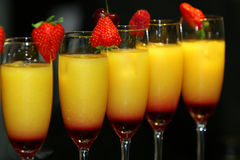 Serving cocktails. Tequila Sunrise. Royalty Free Stock Image