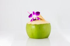 Serving coconut water and decorating orchid flower Stock Image