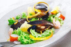 Serving of delicious seafood salad Royalty Free Stock Images