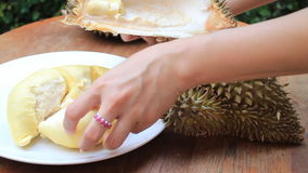 Serving Delicious Thai Durian Fruit stock video footage