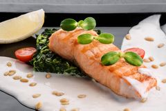 Serving a dish Salmon fillet in a creamy sauce with spinach, lemon and sprouts of soy on a black plate. On a dark background. close up. isolated stock photography