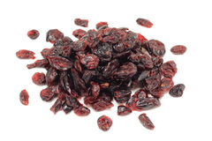 Serving of dried cranberries Royalty Free Stock Image