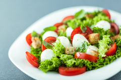 Serving of fresh salad with mozzarella pearls Stock Photography