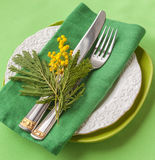 Serving in green tones decorated with a sprig of mimosa Stock Image