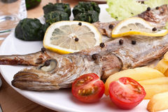 Serving of grilled fish with spinach Royalty Free Stock Image