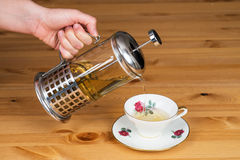 Serving linden tea from french press to a mug. Linden tea serving with a french press to a mug Stock Photo