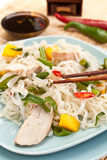 Serving of oriental warm noodle chicken salad. With chopsticks and soysauce Royalty Free Stock Photo