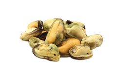Serving of pickled sea mussels. On white background Stock Images