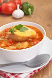 Serving of tasty vegetable and bread soup Royalty Free Stock Images