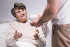 Serving tea to grandmother Stock Photos
