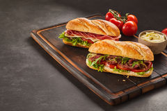 Serving tray with freshly made sandwiches Royalty Free Stock Image