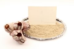 Serving tray with seashell Royalty Free Stock Image