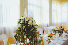 Serving wedding table. Mouth-watering cuisine and beautiful natural decor Stock Photos
