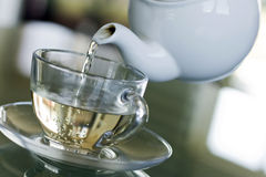 Serving white tea Stock Photo
