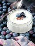 Serving of Yogurt with Whole Fresh Blueberries and Oatmeal on Old Rustic Table stock photo