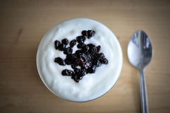 Serving of Yogurt with Whole Fresh Blueberries and Oatmeal on Old Rustic Wooden Table. Closeup Detail. Stock Photography