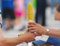 Servir le maïs beurré chaud Photos libres de droits
