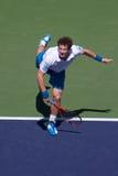 Servire dell'Andy Murray immagini stock libere da diritti