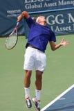 Servire di tennis (Peter Polansky) Fotografia Stock