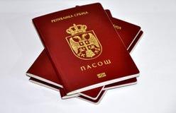 Servisch nieuw paspoort stock afbeelding